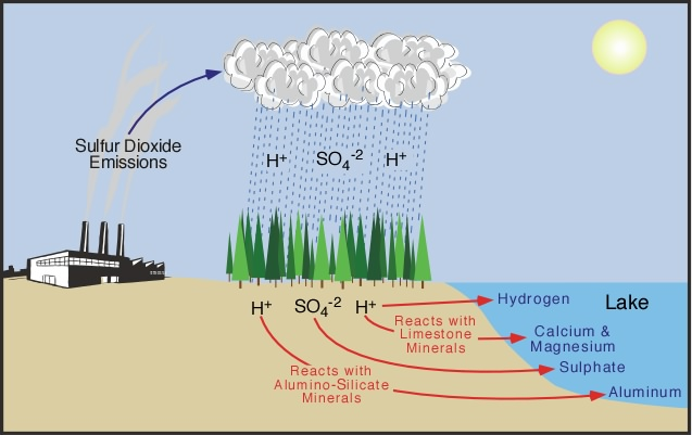 Figure 2: Surface Water Acidification Begins With Acid Deposition To  Adjacent Terrestrial Areas